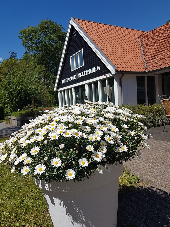 Hotel Vakantiehuis Groepsaccommodatie Fredeshiem De Bult Steenwijk Overijssel