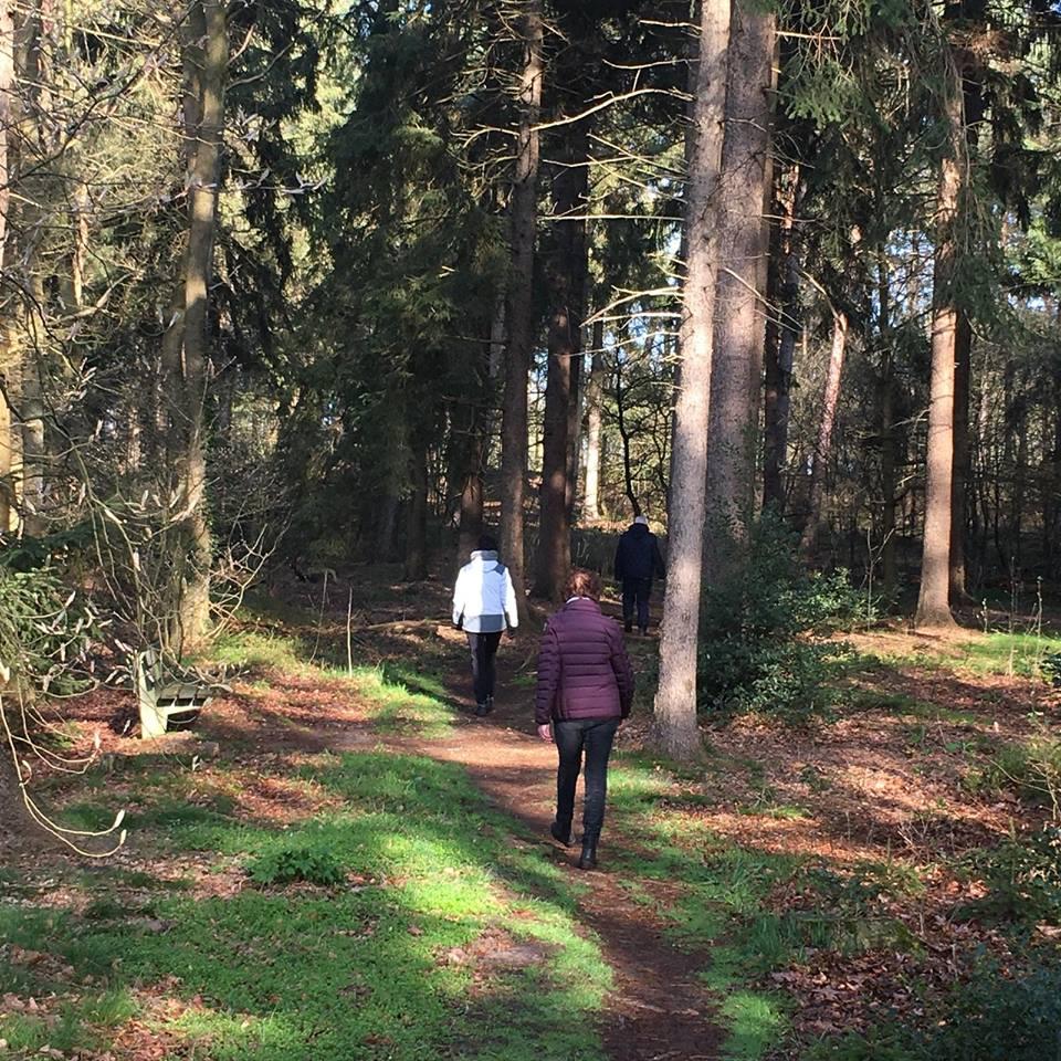 Wandelroute De Bult Steenwijk Landgoed Fredeshiem