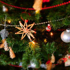 Kerstweek Op Landgoed Fredeshiem De Bult Steenwijk