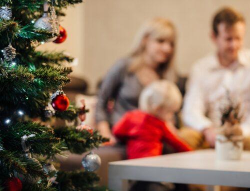 Kerst vakantieweek op Buitengoed Fredeshiem 21-28 december 2020